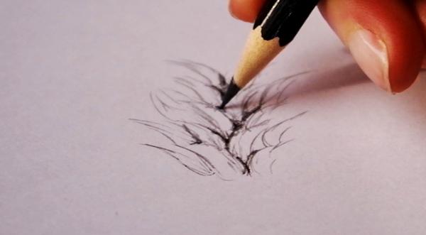 drawingfur_3-4_breaking