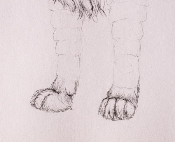 drawingfur_6-2_forepaws