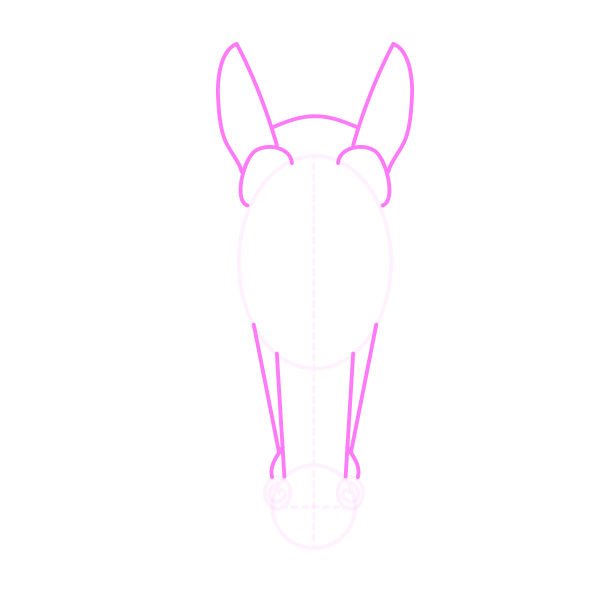 drawinghorse_5-10_head_front