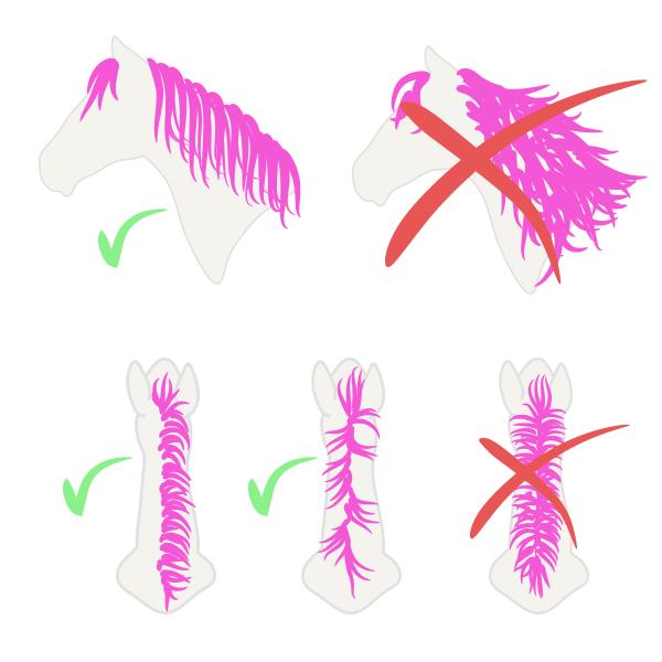drawinghorse_9-1_mane