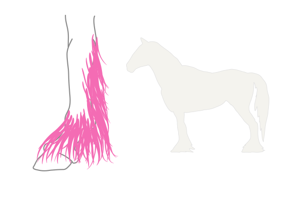drawinghorse_9-3_feathering