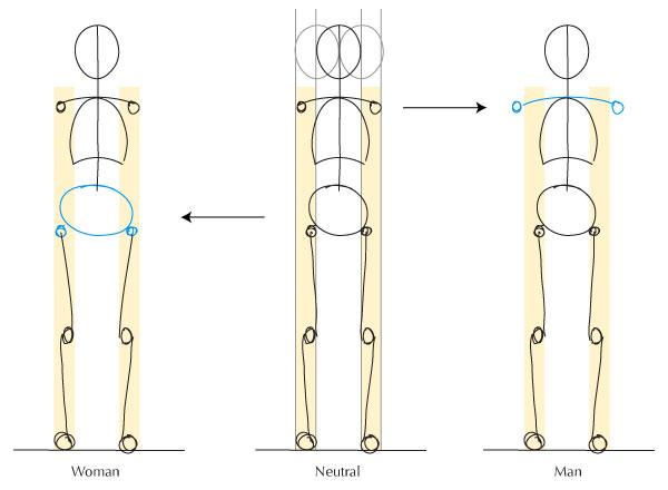 Hips and shoulder width