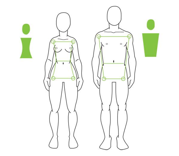 Female vs male figure