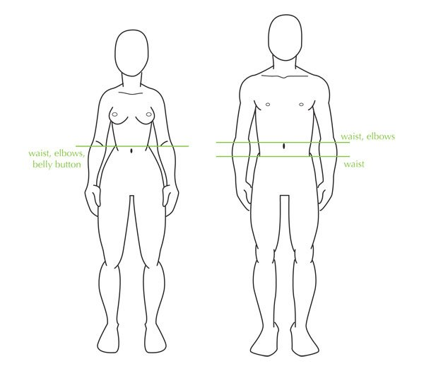 The waist