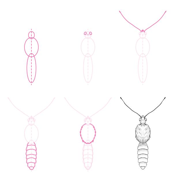 drawingbutterfly_1-2_butterfly_body_top