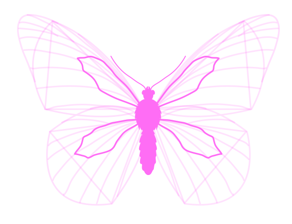 drawingbutterfly_3-7_wing_drawing