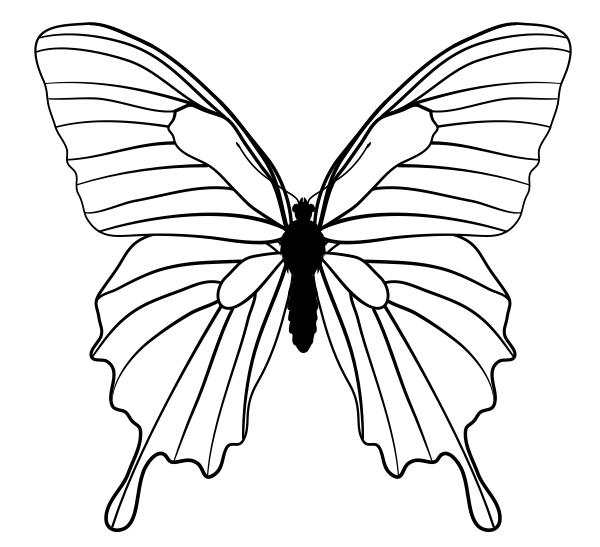 drawingbutterfly_5-1_mountain_blue