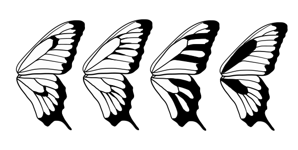 drawingbutterfly_8-6_design_stressing