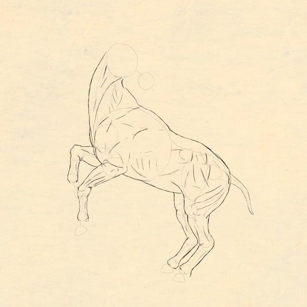 drawinghorse_3-6_skin_done
