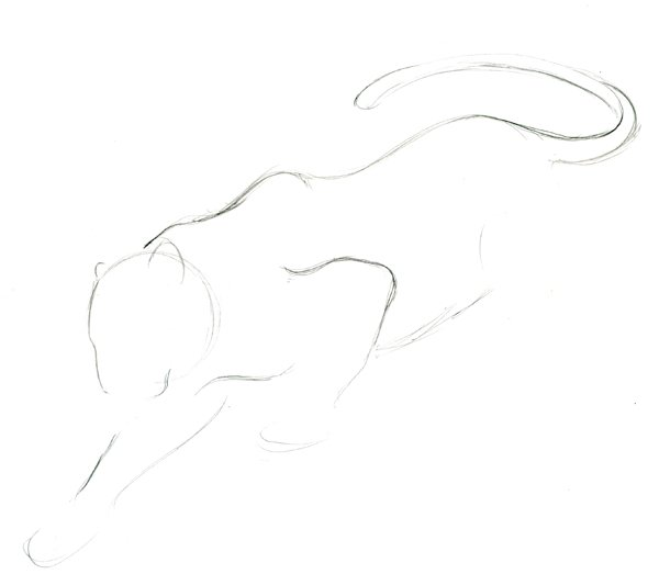 Step 4 - Lineart