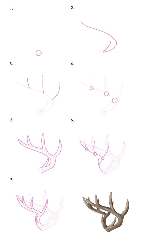 drawingdeer-7-6-tail-deer-antlers