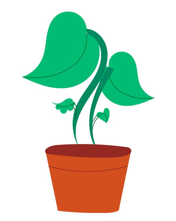 Plant-009
