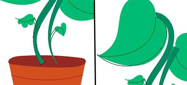 Plant-010