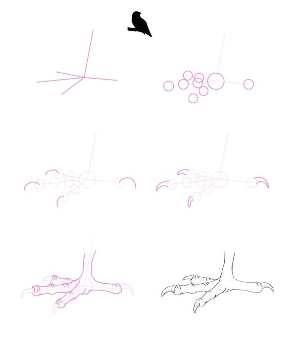 howtodrawbird-2-2-sparrow-feet