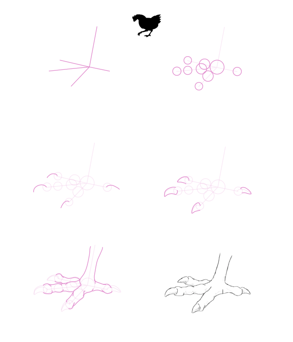 howtodrawbird-2-5-chicken-feet