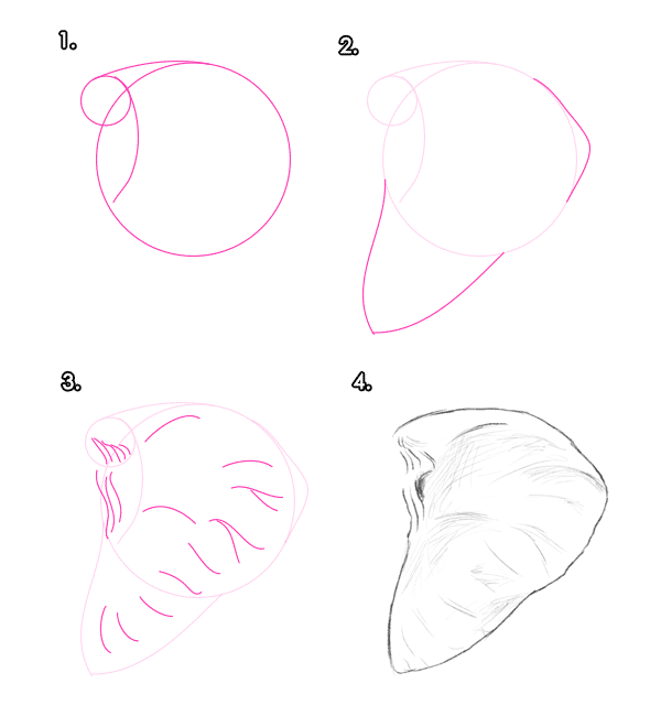 howtodrawelephants-3-4-african-elephant-ear