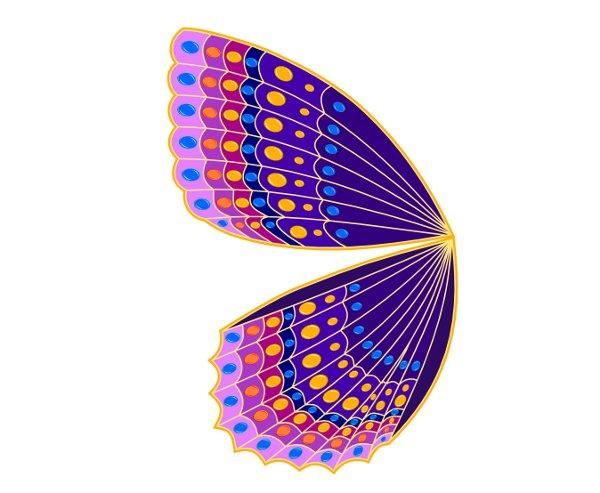 butterfly43