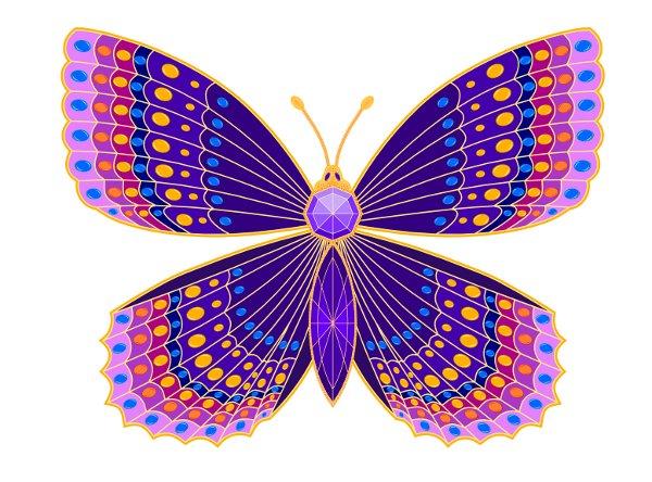 butterfly44