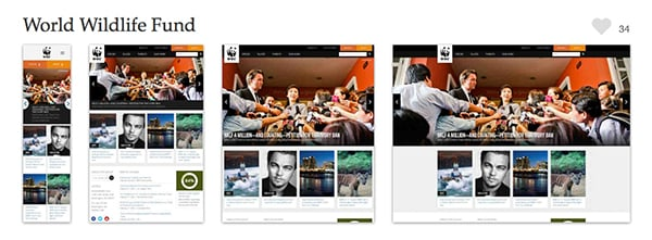 The WWF website is a gorgeous example of web design that works brilliantly responsively as well. Screenshots provided courtesy of mediaqueri.es.