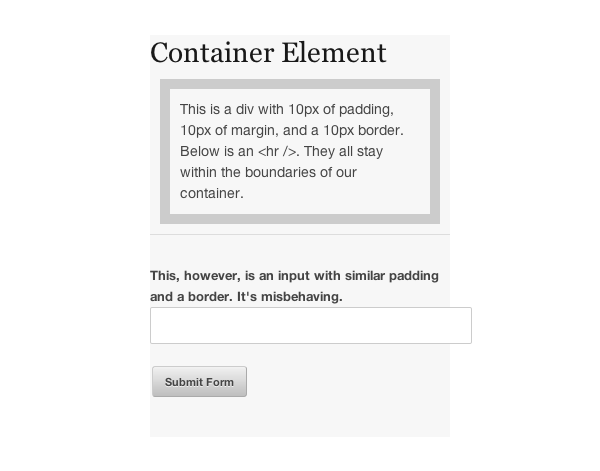 form input width problem