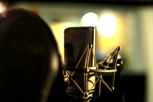 Studio condenser microphone in shockmount. Photo: PhotoDune.