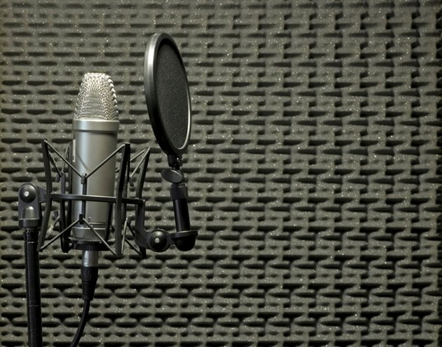 A condenser microphone with shock mount and pop shield inside an acoustic booth with acoustic panels on the background. Photo: PhotoDune.