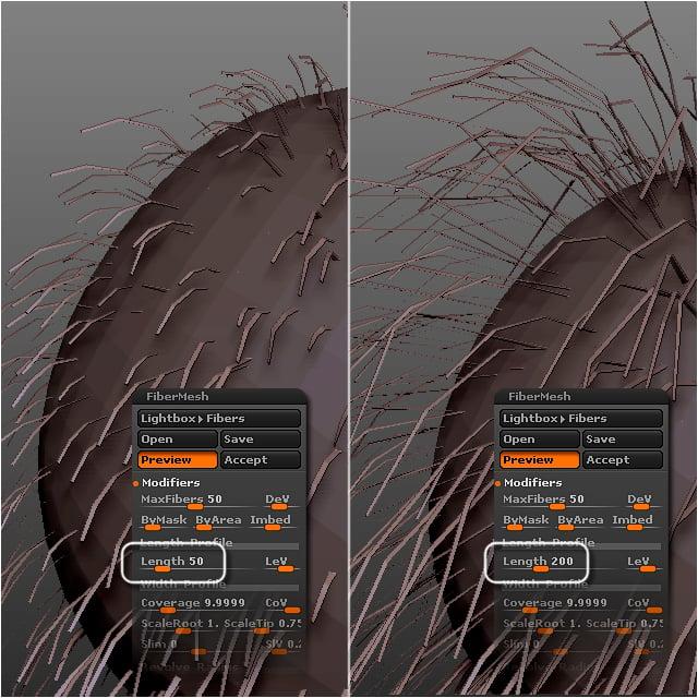 fibermesh_tutorial_fibermesh_settings_step_9