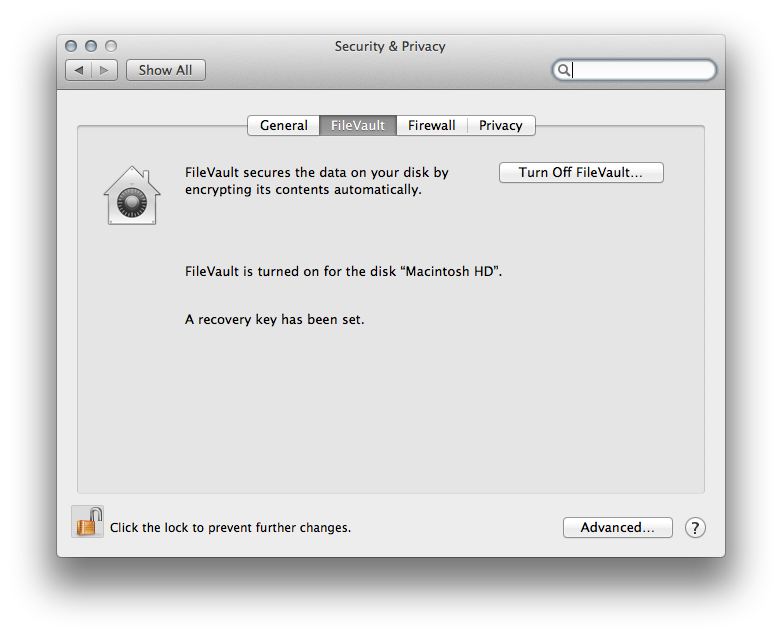 FileVault is a really secure way to encrypt your files.