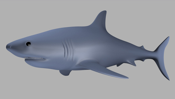 Maya_Shark_PT1_104