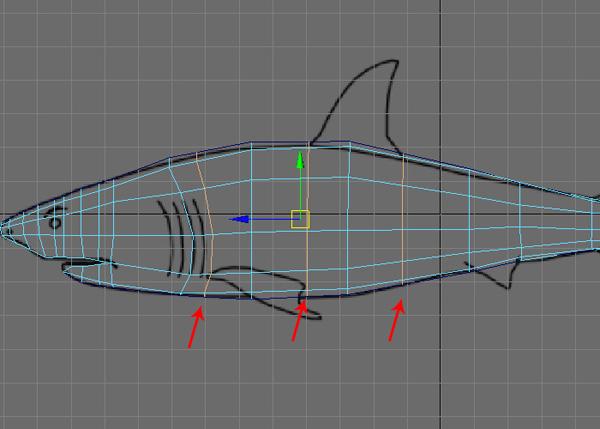 Maya_Shark_PT1_32
