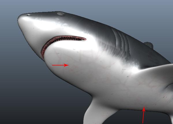 Maya_Shark_PT2_50
