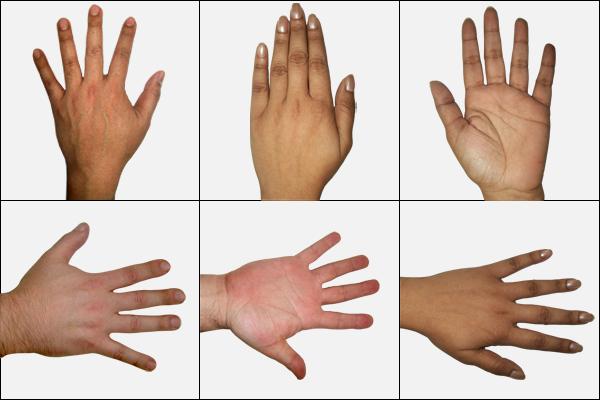 Freebie 13 Human Hands Premium Pack Preview