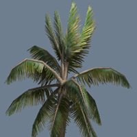 Preview for Speedtree to UDK: Creating A Palm Tree In Speedtree And Importing It Into UDK