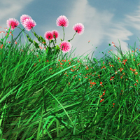 Preview for Animating Grass and Flowers Using Paint Effects in Maya