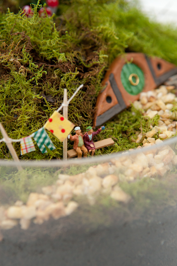 Make Your Own Hobbiton Miniature Garden via Crafttuts+