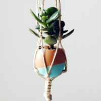 Hanging succulent egg preview