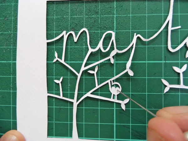 papercut name design birds eyes front