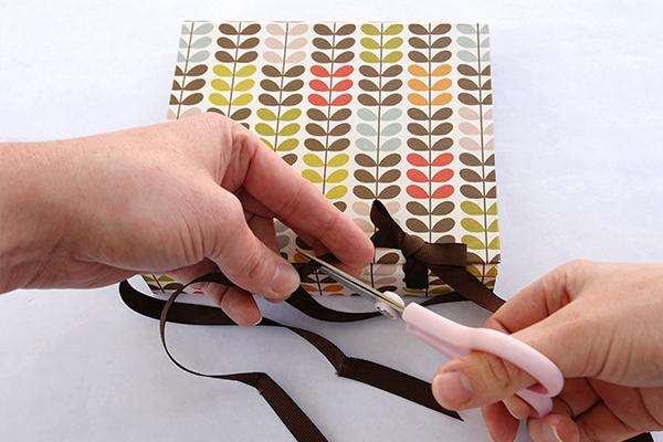 wraparound-case-trim-ribbons