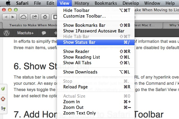 Safari Status Bar