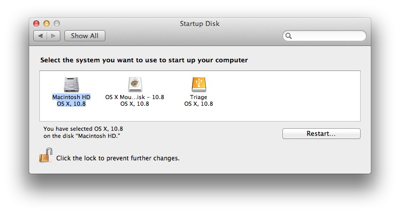 OS X's Startup Disk will display all available bootable partitions