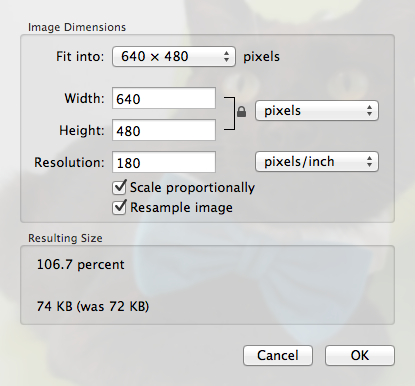 Resize your image using presets or custom dimensions