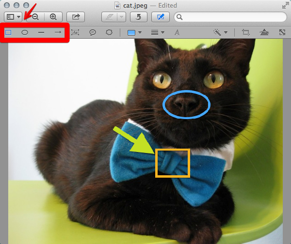 Add annotations to your image using shapes