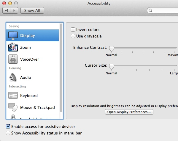Display Accessibility Options