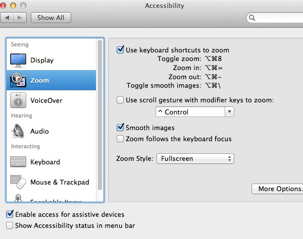 Zoom provides a useful set of tools to zoom in on areas of the screen that might be harder to read