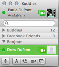 A green camera icon indicates that your buddy is available for video or voice chat.