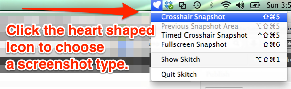 choose capture type skitch