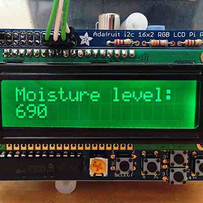 Preview for Build a Raspberry Pi Moisture Sensor to Monitor Your Plants