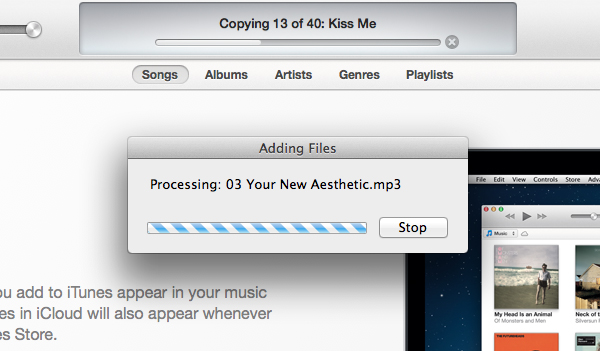 iTunes will scan your Mac for media.