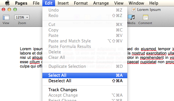 Highlight the text by clicking Edit and then Select All.