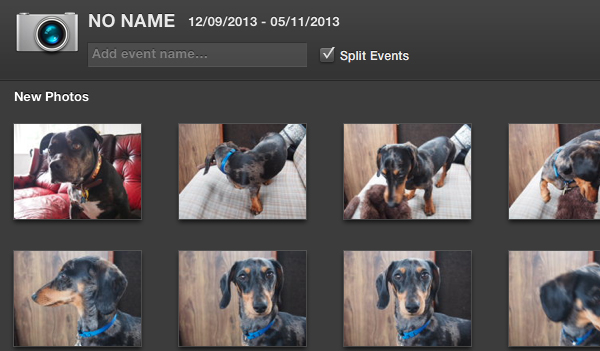 iPhoto will display every image in thumbnail form.